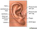 Medical findings based on ear anatomy