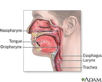 Throat Or Larynx Cancer